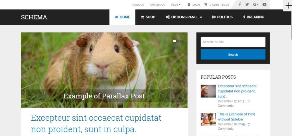Wordpress Tech Blog Theme